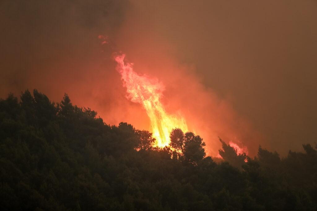 Φωτιά στον Σχίνο: Δεύτερη νύχτα-κόλασης με τις φλόγες - Βελτιωμένη κάπως η εικόνα το πρωί - Προς τα Μέγαρα η πυρκαγιά