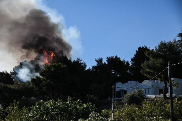 Φωτιά στο Σχίνο: Πάνω από 40 χιλιάδες στρέμματα έγιναν στάχτη στα Γεράνεια Όρη